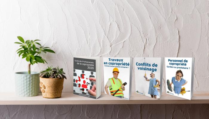Contenus exclusifs - Ebooks