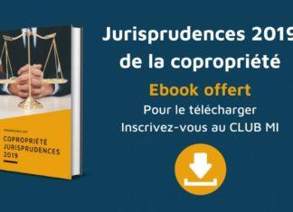 jurisprudence 2019