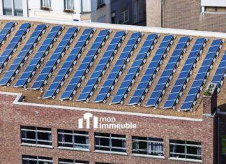 Panneaux solaires en copropriété : comment rentabiliser vos toits ?