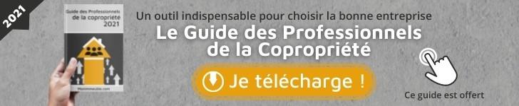 Guide des Pros 2021 (728×150)