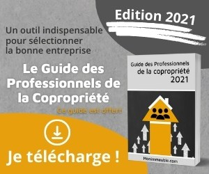 Guide des Pros (300×250)