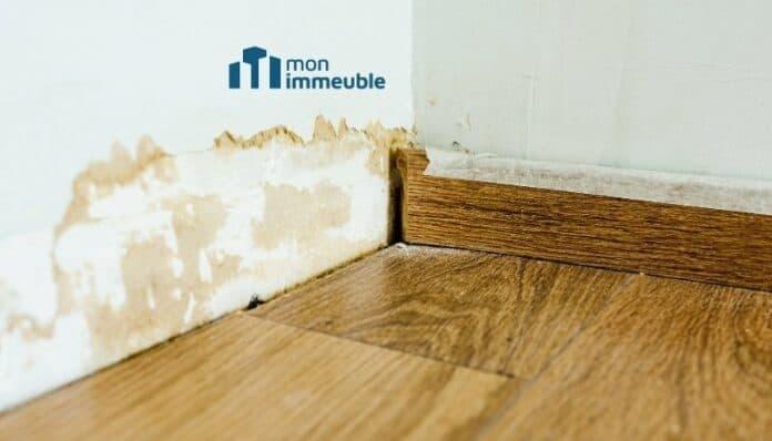 Humidité des murs en copropriété : quelles sont les solutions ?